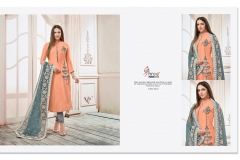 Shree Fab Rangoli Wholesale Suit Catalog Collection-5003
